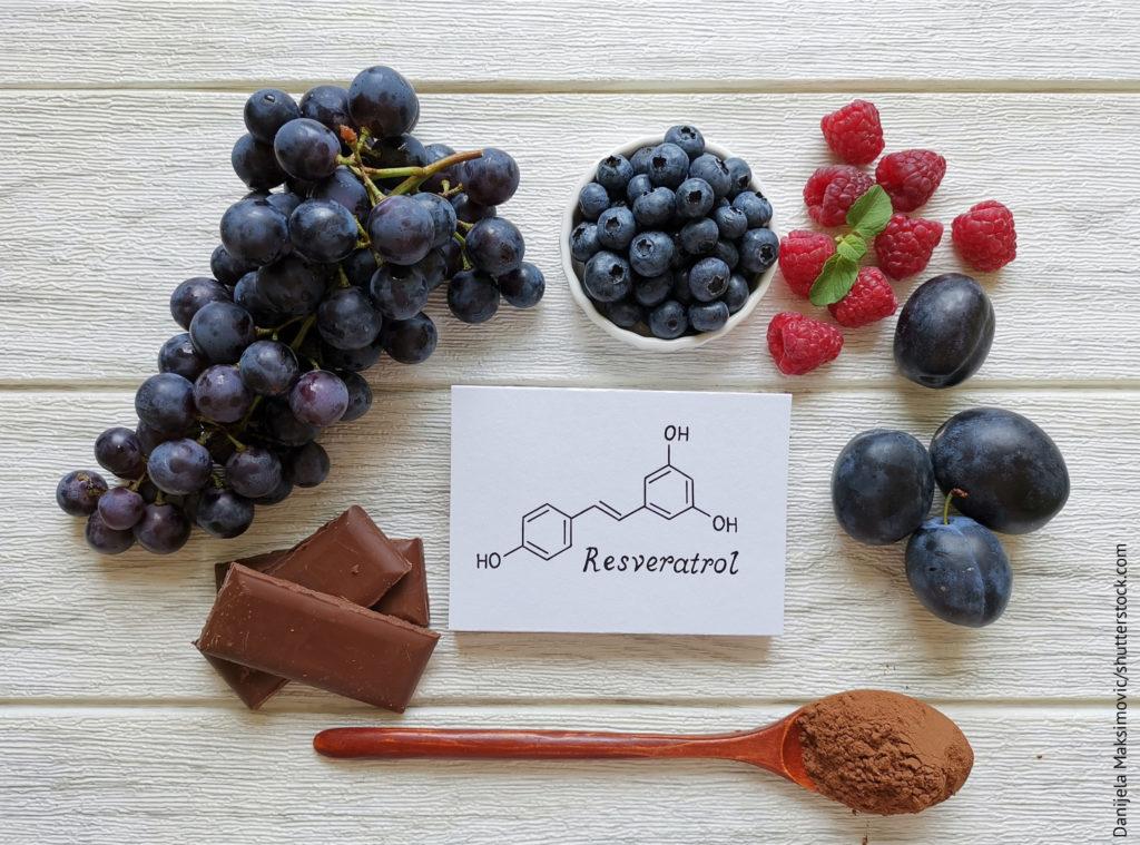 Trauben, Pflaumen, Kakaopulver, Schokolade, Heidelbeere und Himbeere als natürliche Quellen von Resveratrol