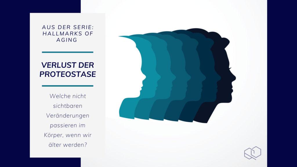 Verlust der Proteostase - MoleQlar