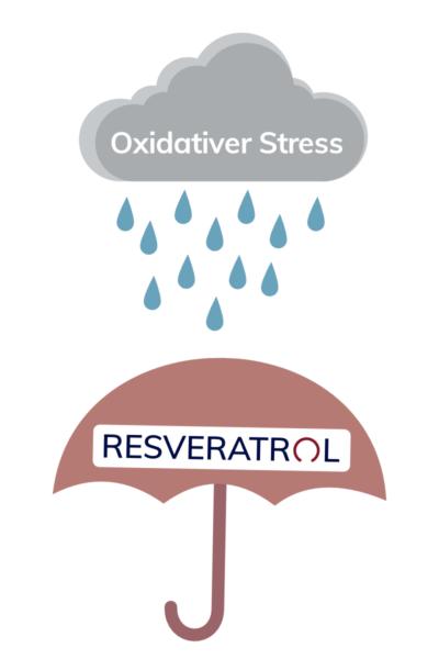 Resveratrol Effekt1
