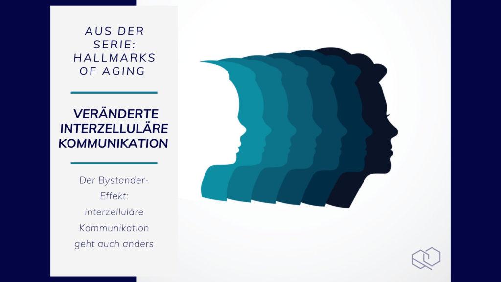 Veränderte intrazelluläre Kommunikation - Hallmarks of Aging