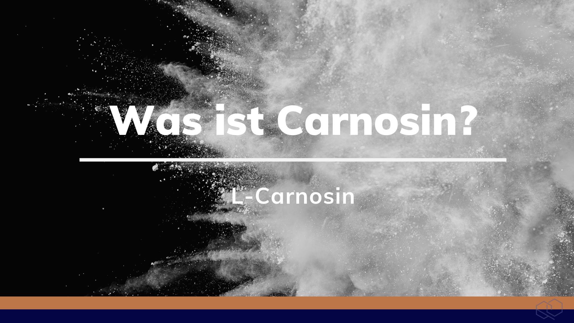 Was ist Carnosin?